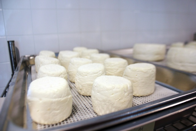 goat cheese mold